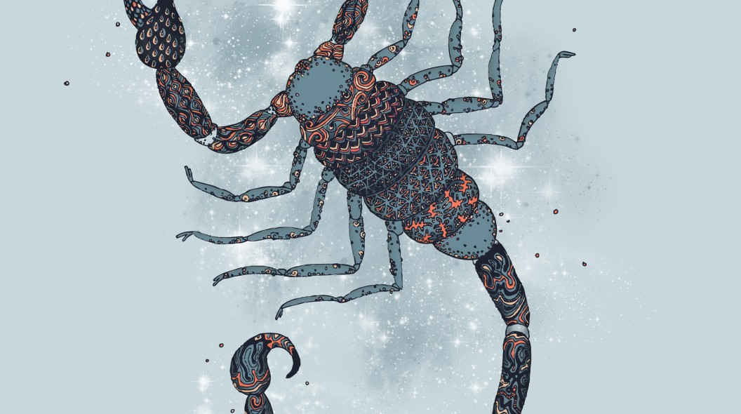 8---skorpionen_web